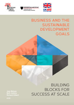 Business and the SDGs: Building Blocks for Success at Scale