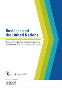 Business and the United Nations: Working Together Towards the Sustainable Development Goals - A Framework for Action